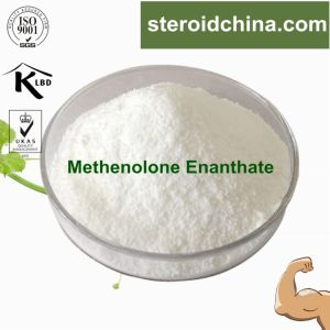 Pharmaceutical Chemcial Steroid Hormones Methenolone Enanthate CAS: 303-42-4 pictures & photos
