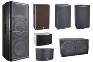 2017 New Design Hi Fi Professional DJ Speaker with FM USB pictures & photos