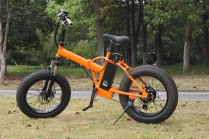 New Model One Year Warranty Small Fat Wheel Folding Electric Bicycle pictures & photos