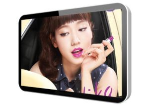 10.1 Inch LCD Player pictures & photos