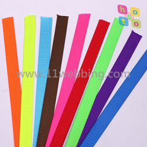 Factory Direct Sale Cheap Nylon Pet Webbing for Dog Leashes pictures & photos