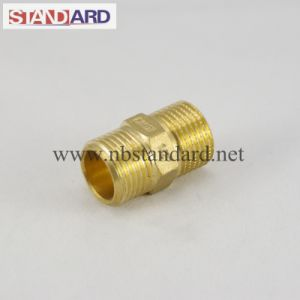 Brass Male Nipple Coupling pictures & photos