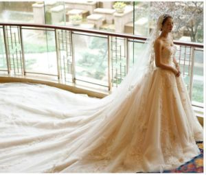 2017 Crystal Beaded Embroidered Lace Bridal Wedding Dresses PLD3201 pictures & photos