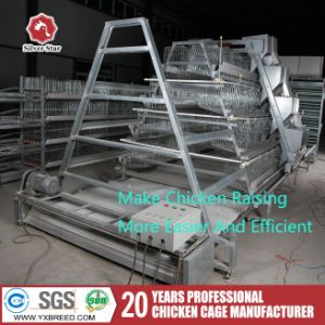 Silver Star 3/4tiers a Type Broiler Cages for Farm pictures & photos