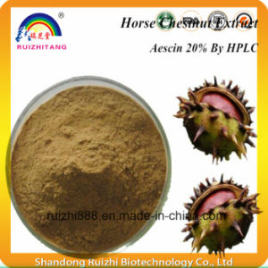 Natural Aesculus Hippocastanum Extract Aescin Escin pictures & photos