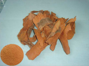Yohimbe Bark Extract pictures & photos
