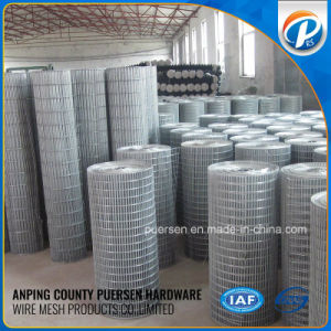 High Quality Low-Carbon 1/4 Inch Galvanized Welded Wire Mesh pictures & photos