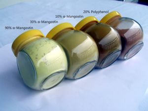 100% Natural Mangosteen Extract with Alpha Mangostin pictures & photos