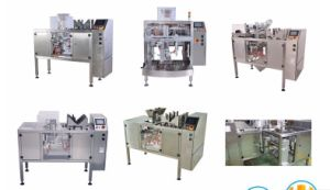Mini Stand- up Pouch Packing Machine for Snack, Buscuit, Potato Chips pictures & photos