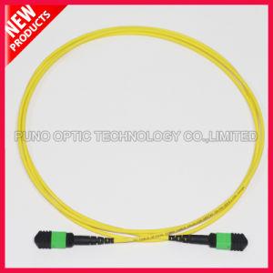 12 Cores Fiber Optic MTP Elite Singlemode Patch Cable pictures & photos