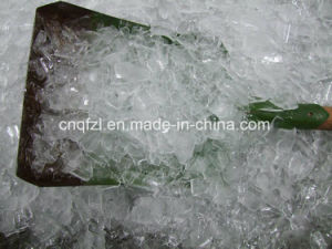 Plate Ice Machine for Fish pictures & photos