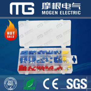 Mg-300 PCS High Quality Assorted Wire Nut Kit pictures & photos