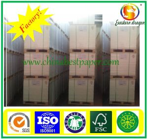 (70*100cm, 60*90cm) White Offset Printing Paper pictures & photos