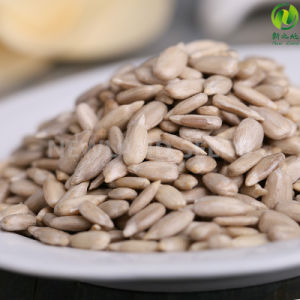 Professional Product Top Quality Sunflower Seeds Kernels pictures & photos