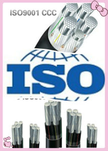 Aluminum Alloy Cable CCC and ISO Certificate pictures & photos