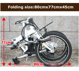 Ce Foldable Electric Bike (LWEB-L2004F) pictures & photos