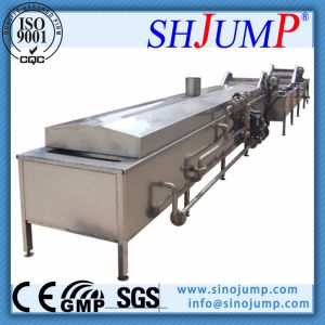 High-Quality Pickling Fruit and Vegetable Production Machinery on Sale pictures & photos