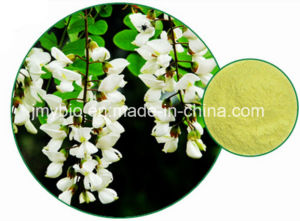 Factory Direct Supply Sophora Japonica Extract Rutin and Quercetin pictures & photos