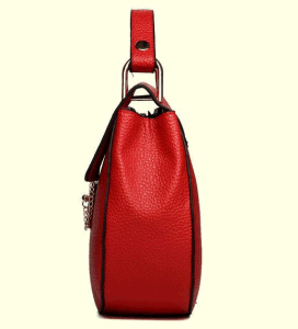 New Female Brand Handbag in Autumn and Winter (BDMC144) pictures & photos