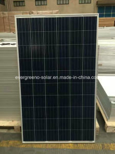 100-300W PV Poly/Mono Solar Panel Solar Module for System pictures & photos