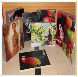 China Wholesale Advertising Light Boxes Fabric Light Box pictures & photos