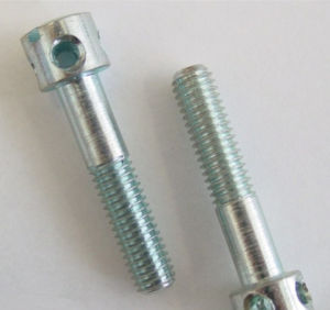 Slotted Capstan Screws DIN 404 with Nut pictures & photos
