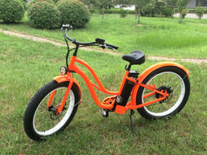 China Made Cheap Fat Tire Electric Unfoldable Bicycle pictures & photos
