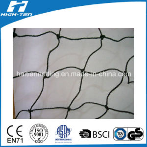 PE Material Anti-Animal Netting (HT-AAN-01) pictures & photos