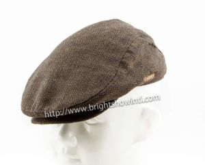 Customized Fashion Knitted IVY Cap /Hat pictures & photos