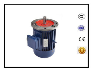 Y2 Series Three Phase Motor B5 Flange pictures & photos