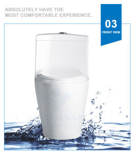 Weidansi Ceramic Wash Down S-Trap One Piece Toilet (WDS-T6115) pictures & photos
