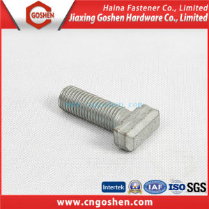Customized T Head Bolt / Special Screw, Bolt as Drawing pictures & photos