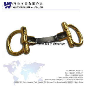 High Quality Shoe Buckle and Shoe Ornament pictures & photos