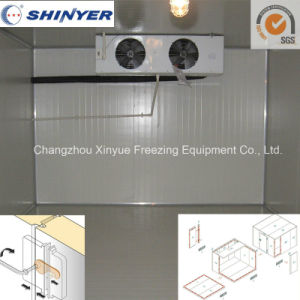 Modular Cold Room Since 1982 with Camlock for Keeping Food Fresh pictures & photos