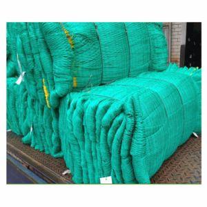 PP Knotless Bird Proof Net/Green Color Anti Bird pictures & photos