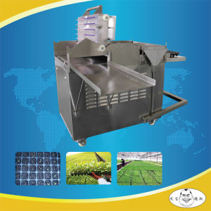 High Quality Planting Machine Lettuce