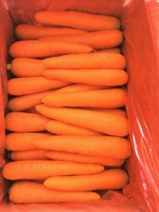 250-300g New Crop Fresh Carrot pictures & photos