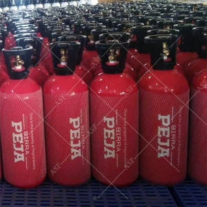 Alsafe Aluminum CO2 Gas Cylinder 10lb pictures & photos