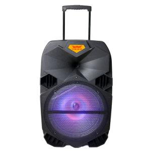 Bluetooth Trolley Rechargeable Speaker F6073 pictures & photos