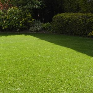 New Green Artificial Lawn for Decoration pictures & photos