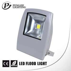 LED Night Lights Die Casting Aluminum 10W LED Flood Light pictures & photos