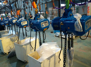 Liftking 5t Double Chain Fall Electric Chain Hoist pictures & photos