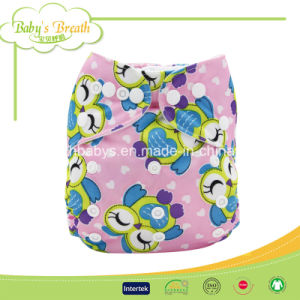 Easy Use Hook & Loop Colorful Printing Baby Cloth Nappy