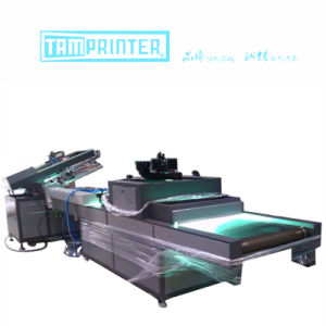 TM-Z1 Paper Sheet Auto Screen Printer pictures & photos