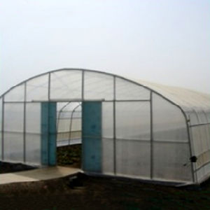 High Popular Vegetable Tunnel Film Green House pictures & photos
