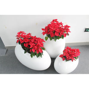 Shopping Mall Fiberglass Decor Flower Pots pictures & photos