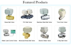 2 Way Mini 1 1/2′′ Inch Motorized PVC Valve Electric Actuator Water Ball Valve pictures & photos