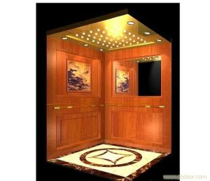 China cheap practical residential lift elevator china for Cheap home elevators