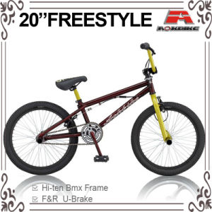 Forge Crank Freestyle BMX Bike (ABS-2024S) pictures & photos