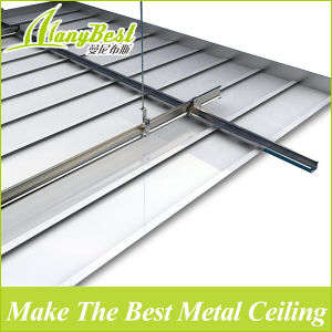2017 C-Shaped Aluminum Lath Ceiling pictures & photos